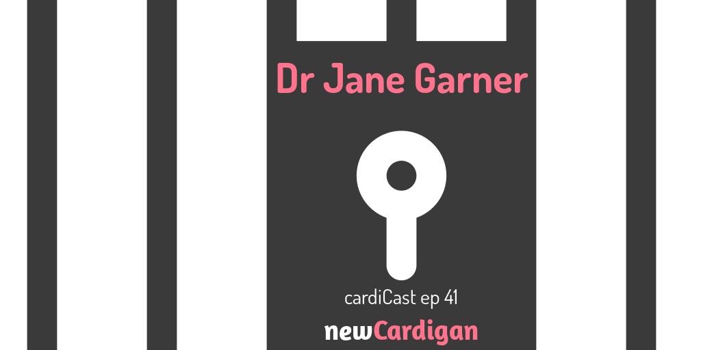 Dr Jane Garner, episode 41, inside image of prison bars